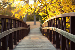 Autumn-Bridge-picspaper-com-600x400